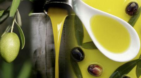 agricoltura, normativa europea olio di oliva