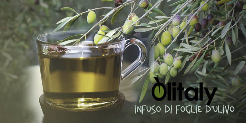 Foto Infuso Olivo