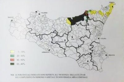 mappa cultivar santagatese