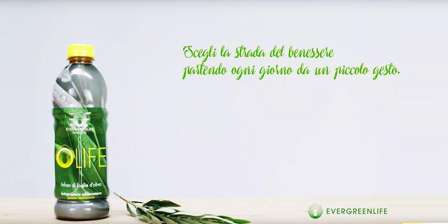 Evergreen Life, Olife
