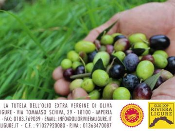 Patto filiera olio DOP Riviera Ligure