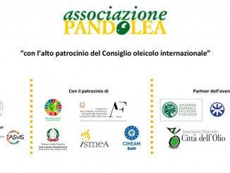 Pandolea Conferenza Internazionale