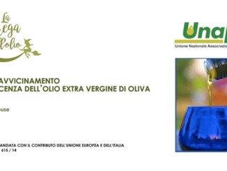 percorsi avvicinamento olio d'oliva