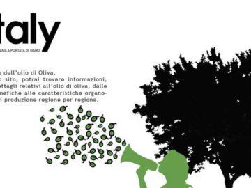 il mondo dell'olio d'oliva